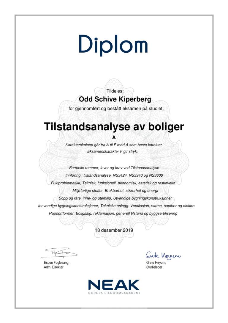 Diplom_Tilstandsanalyse_av_boliger_vr_2019-1
